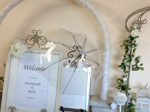 Clear PVC Wedding Umbrella