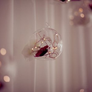 Hanging Globes for weddings