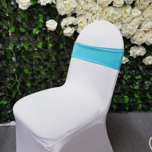 Aqua Chair Band