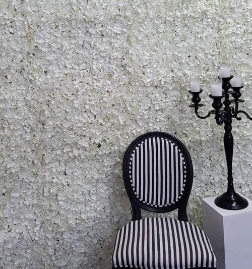 white petal wall