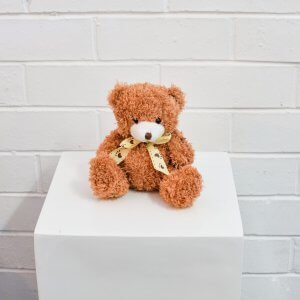 small brown teddy bear hire