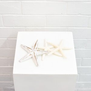 starfish decoration