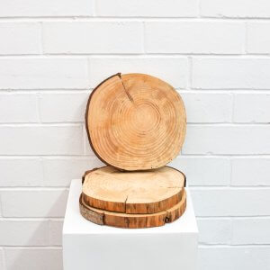 Wood Log Base Centrepiece