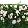 pink and white flower green wall